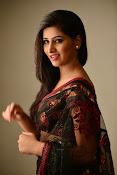 Shamili dazzling photos in saree-thumbnail-13
