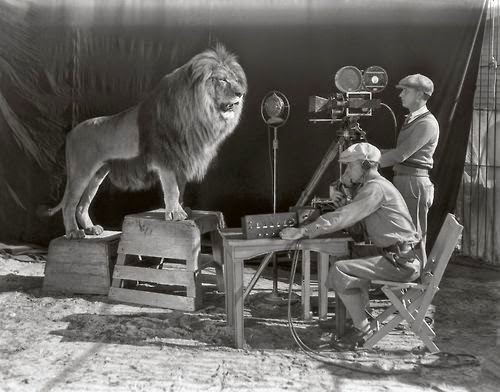 Imagenes cinéfilas - Página 4 MGM+recording+Leo+the+Lion+(whose+real+name+was+Jackie)+roaring+for+its+official+movie+title+logo.+c.1928+%5B1376x1080%5D