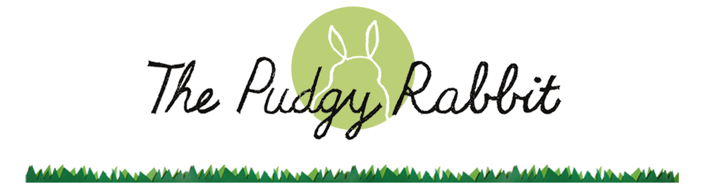 The Pudgy Rabbit
