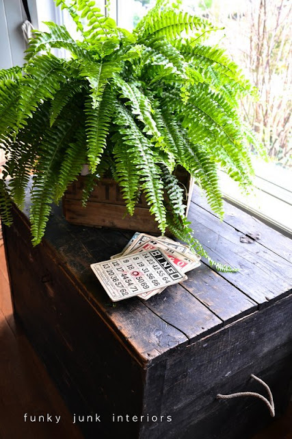 fern in crate via Funky Junk Interiors