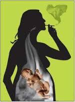 bahaya merokok bagi ibu hamil