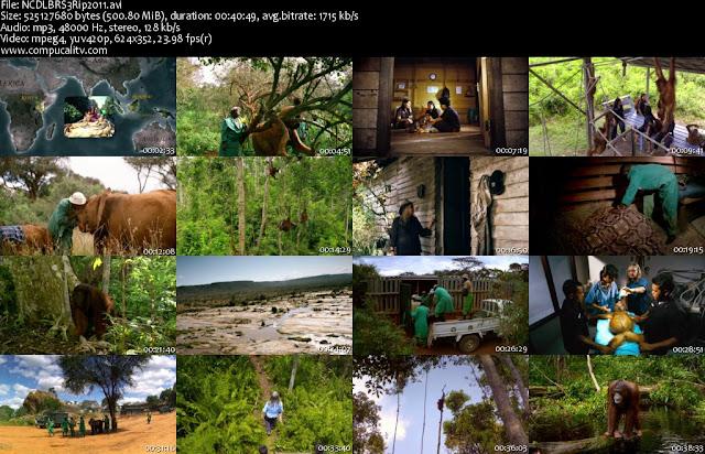 Nacidos para Ser Libres DVDRip Español Latino Descargar 1 Link 2011
