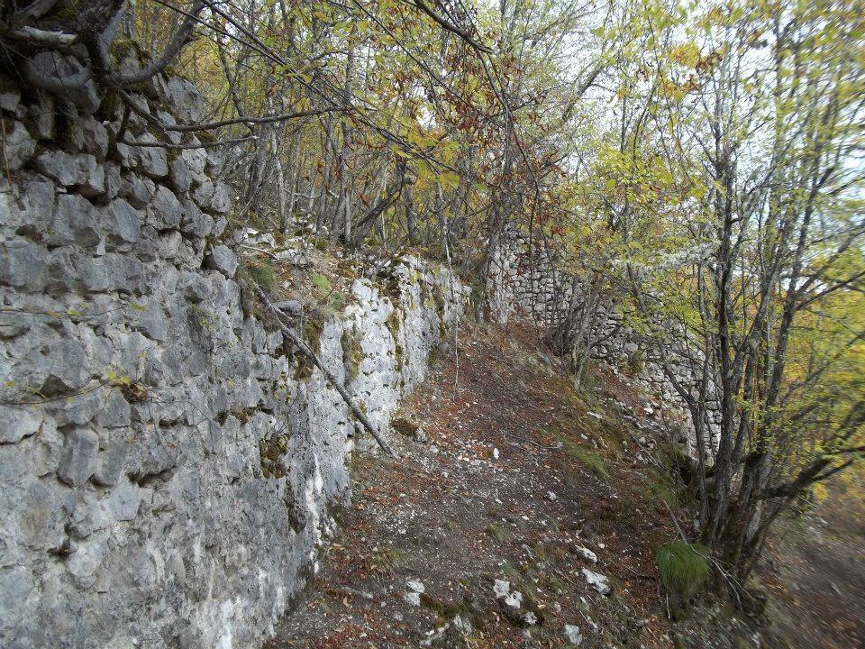 Древни град Борач, у земљи Павловића 535489_10151338175212952_1249636971_n
