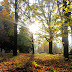 Autumn inspiration part 3