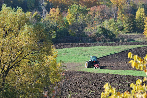 fall plowing, October 7, 2011