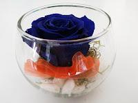 Rosas Azules Naturales Preservadas ¡Duran 4 Años! Santa Ana, El Salvador