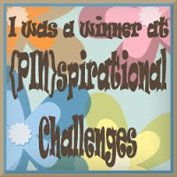 Pinspirational challenges winner