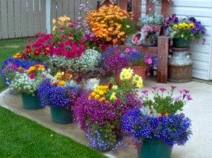 красивые цветники своими руками, как сделать цветник