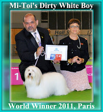 WORLD CH MI-TOI'S DIRTY WHITE BOY