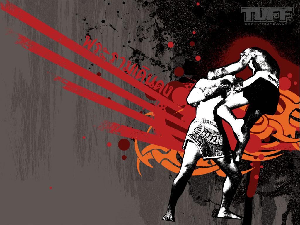 http://2.bp.blogspot.com/-VWWNbVGMr7I/TvoAbJcs-AI/AAAAAAAAAOM/W6mGBuuzxIo/s1600/Muay-Thai-boxing-Wallpaper-7.jpg