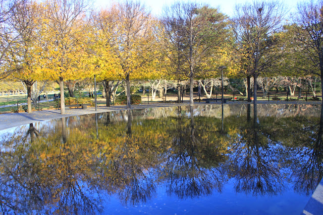 Clear Lake reflection at National Mall Park in Washington DC, USA