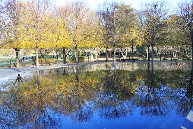 Clear Lake reflection at National Mall Park in Washington DC, USA