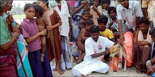 pria india menikahi anjing