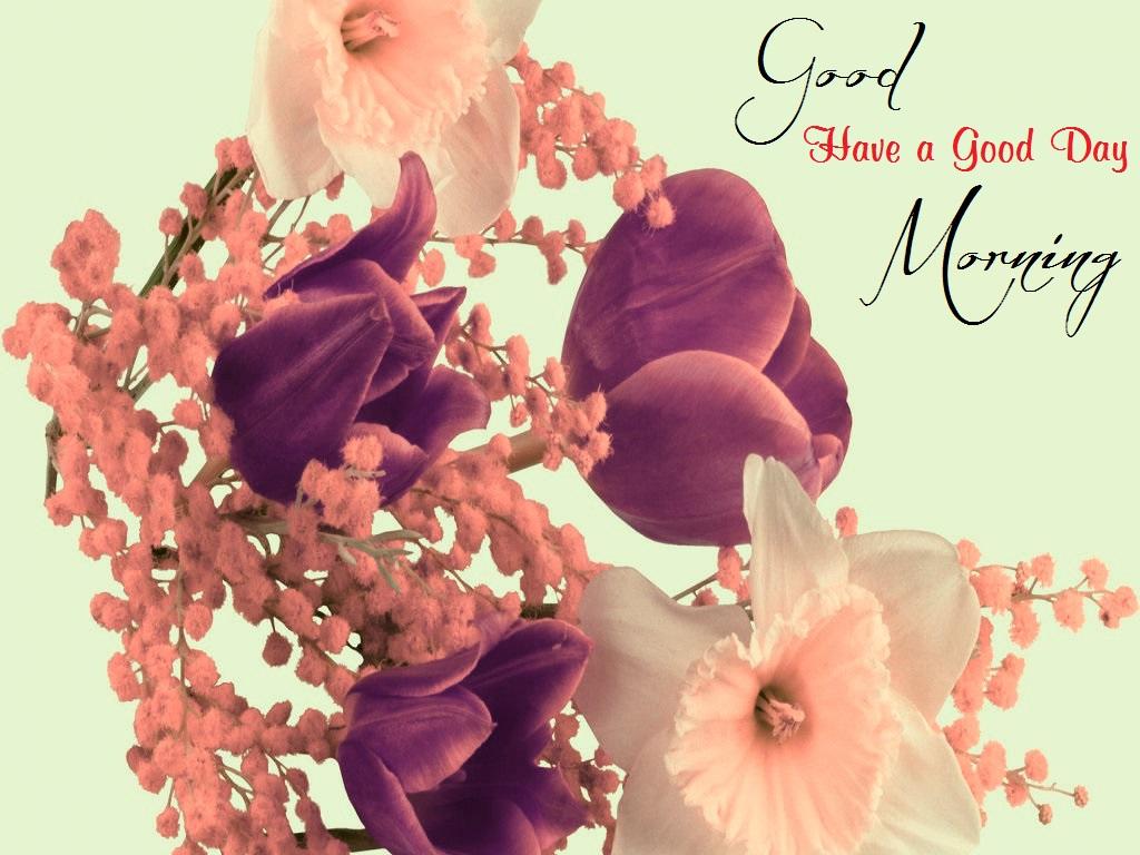 Good Morning Beautiful Photos Download : Beautiful good morning full size wallpaper download