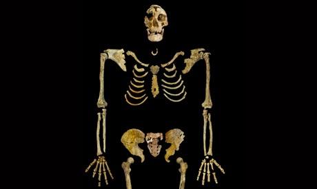 Leuven University  agreed to return a 35,000-year-old human skeleton to Egypt