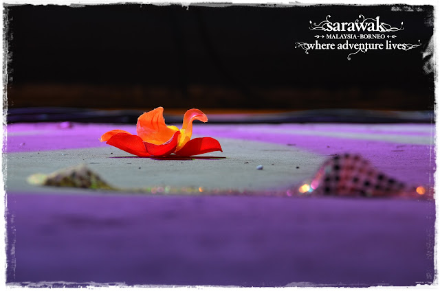 A flower left behind by a performer ... till we meet again in June 28-30 2013