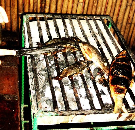 Grilled fish, perfect for chow time.