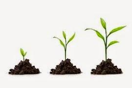 A mudança faz parte do crescimento