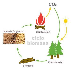 Esquema del ciclo del CO2 en la biomasa.