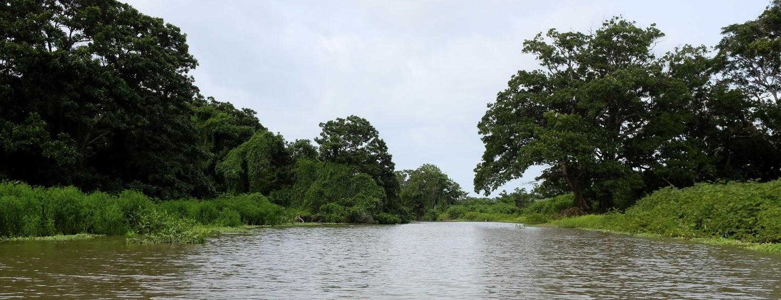 Marais du Rio Istiam