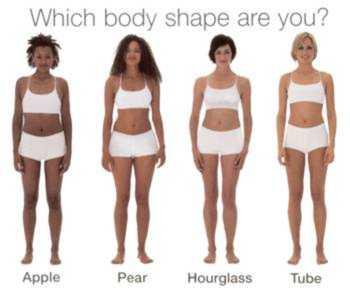 definition body