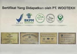 Obat Pelangsing Herbal WSC