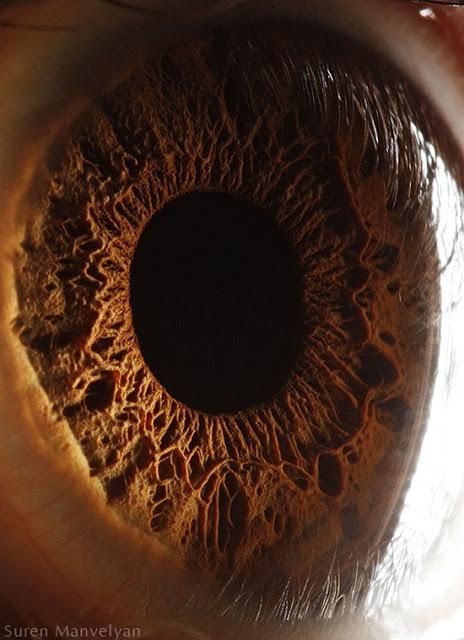 تفاصيل عيناك كما لم تراها أو تعرفها من قبل