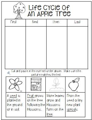 1st Grade Hip Hip Hooray Johnny Appleseed Brings Apple Themed