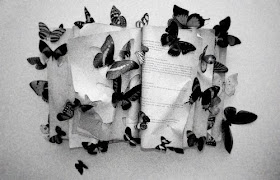 Butterflies of yesteryear