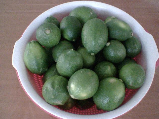 檸檬8斤(皮越青越厚好,精油越多)