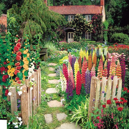 Garden inspiration part ii earth wallpaper for Cottage garden plants