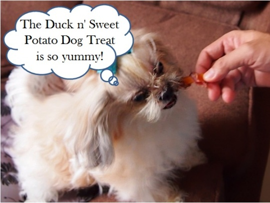 vitacost dog treats