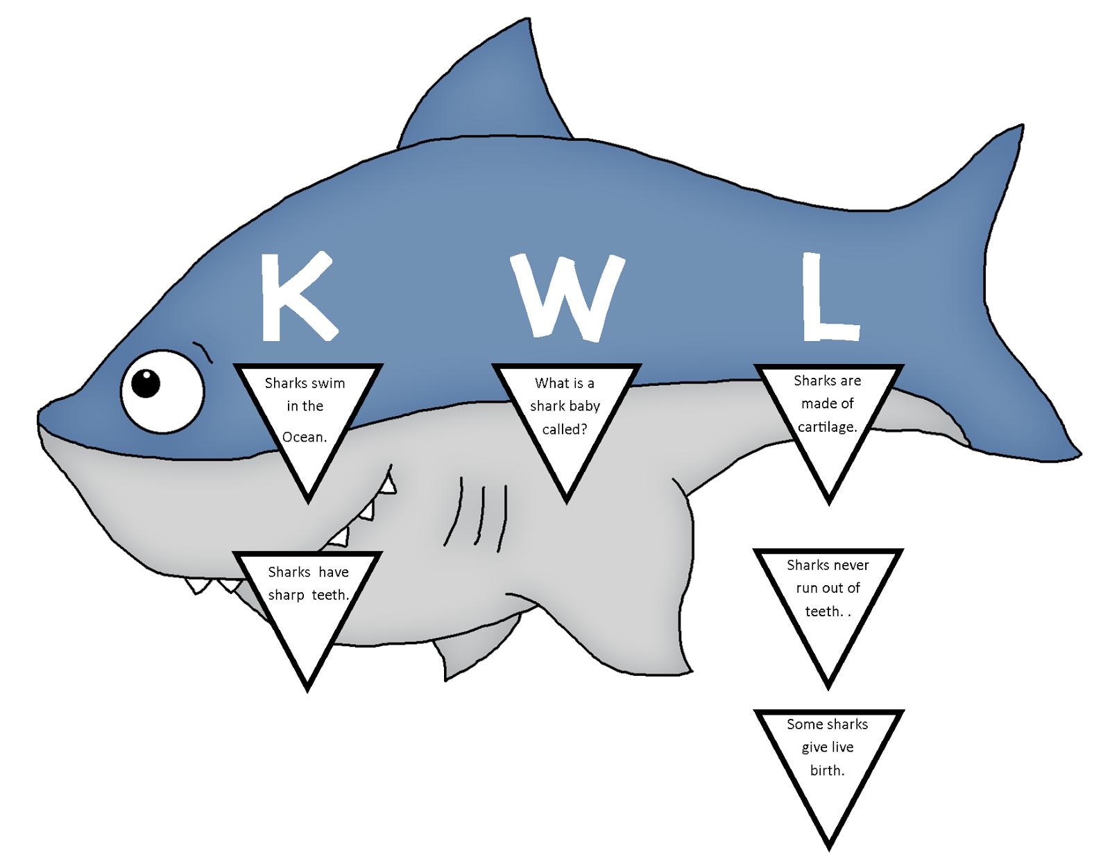 Sharks The Schroeder Page