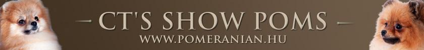 CT's Show Poms