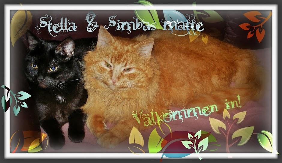 Stella och Simbas matte