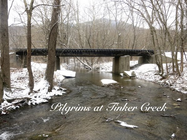 Pilgrims at Tinker Creek