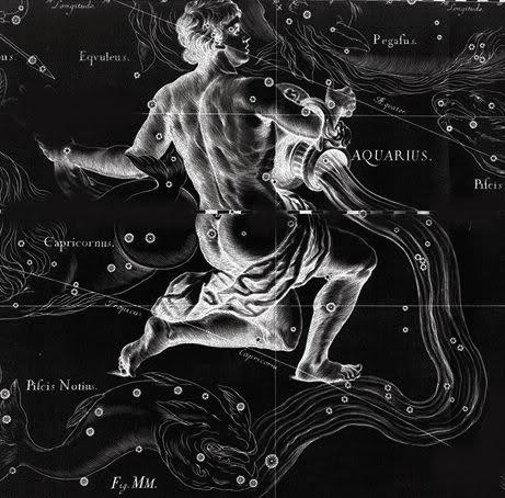 Horoscop 2015 - Varsator