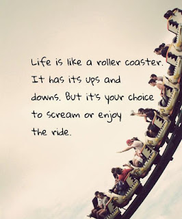 Life is like a roller coaster. You can either scream every time you hit a bump or you can throw your hands up in the air and enjoy it