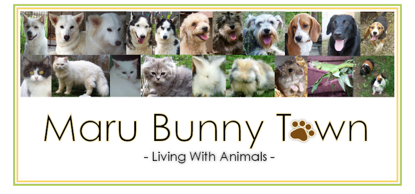 Maru Bunny Town, Living with Animal