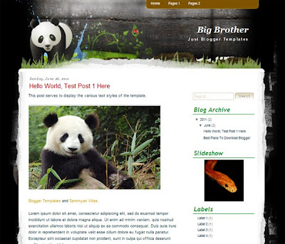 Big Brother Blogger Templates