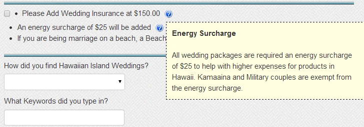 What S New Faq What Is An Energy Surcharge