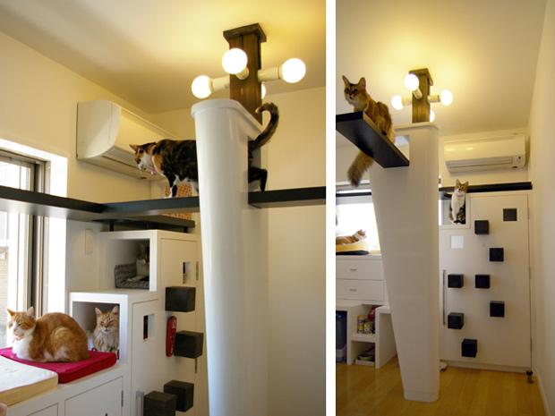 Gatos A Casa Dos Sonhos Arte De Fazer Decora O E