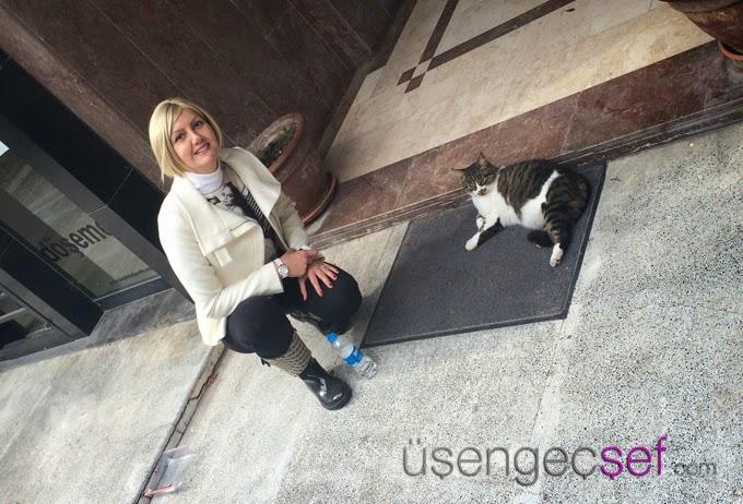 usengec-sef-kedi