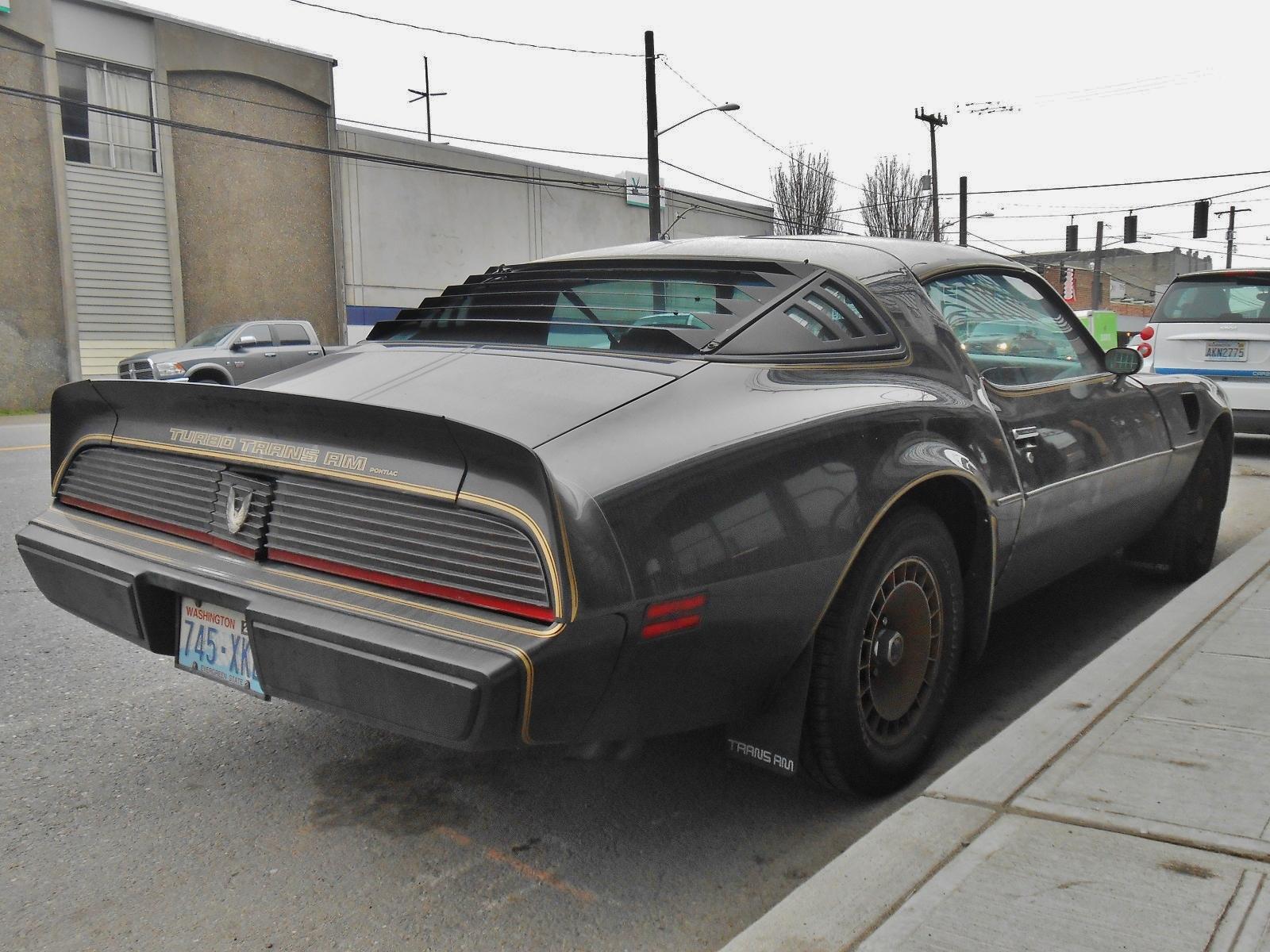 seattle 39 s parked cars 1981 pontiac firebird trans am turbo. Black Bedroom Furniture Sets. Home Design Ideas