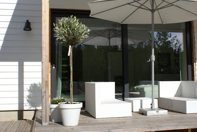 oliivipuu, vinyyliverhous, vinyylitalo, valkoiset kesäkukat, valkoinen varjo, liukuovi, lumovalaisin