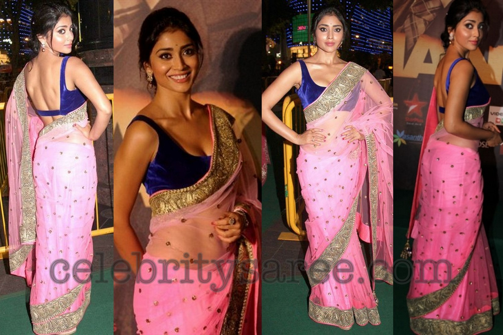 Shriya Saran in Transparent Saree at IIFA 2012 | Saree Blouse Patterns