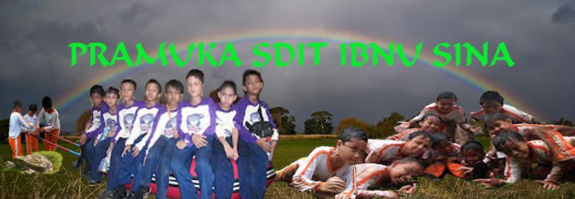 Pramuka SDIT Ibnu Sina Jakarta