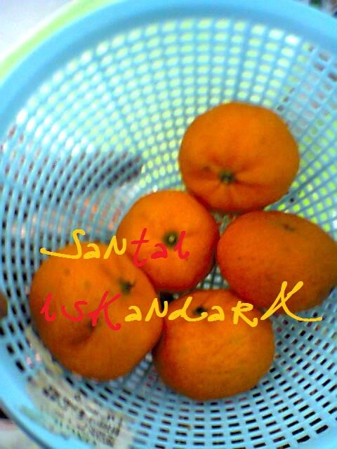 Santai-iskandarX-Makanan-Tengahari-Pilihan-iskandarX-7-iskandarx.blogspot.com