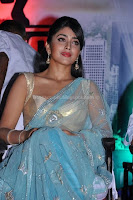 Shriya, hot, saree, and, blouse, stills