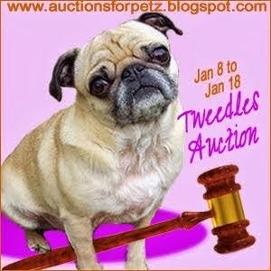 http://auctionsforpetz.blogspot.com